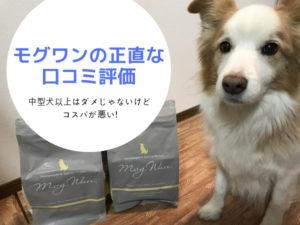 モグワンはダメ!?実際に購入した正直な口コミ評価。中型犬以上はコスパが悪い!