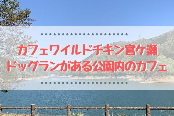 カフェワイルドチキン宮ケ瀬へ行ってきた!ドッグランがある公園内のカフェ